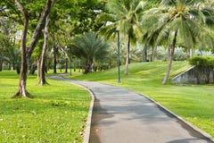 Rowerowy sposób w zieleń parku Zdjęcia Stock