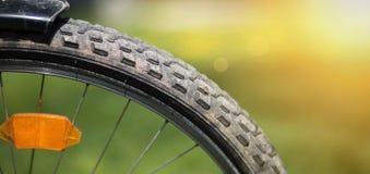 rowerowy stary koło Fotografia Stock