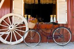 rowerowy stary rocznik Zdjęcia Royalty Free