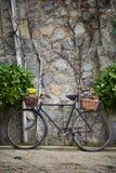rowerowy wiązek kwiatów rocznik Obrazy Stock