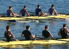 Rowers. Competing in the sea Royalty Free Stock Photos