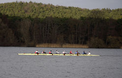 rowers Image stock