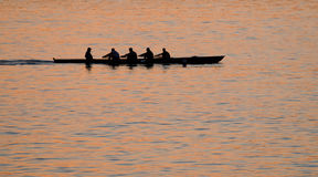 Rowers. Against sea at sunset Stock Photography