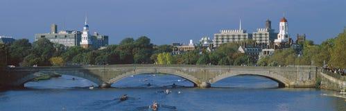 Rowers en el río de Charles, Foto de archivo