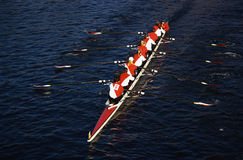Rowers in Head of the Charles Regatta, Cambridge. This is the Head of the Charles Regatta. It is the famous autumn rowing event. It shows the teamwork exhibited stock image