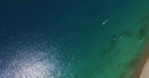 Rowers on kayaks. Mountain lake Issyk-Kul, Kyrgyzstan stock video