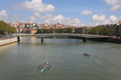 Rowers in Lyon Royalty Free Stock Photo