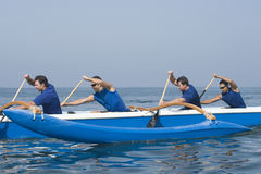 Rowers Paddling Outrigger Canoe In Race Stock Image