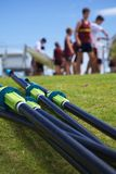 Rowing Regatta Stock Photography