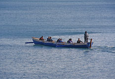 Rowers on the river Royalty Free Stock Image