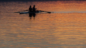 Rowers Royalty Free Stock Image