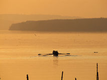 Rowers in the sunset Royalty Free Stock Images