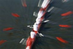Rowers sur le fleuve Image libre de droits