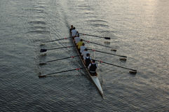 Rowers sur le fleuve (ii) Photo libre de droits