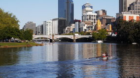 Rowers on yarra stock video