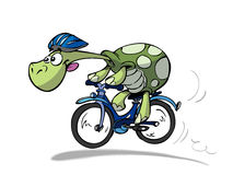 roweru żółw Fotografia Royalty Free
