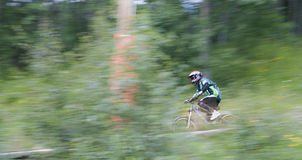 roweru park Fotografia Royalty Free