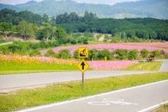 Roweru pas ruchu dla cyklisty Zdjęcie Royalty Free