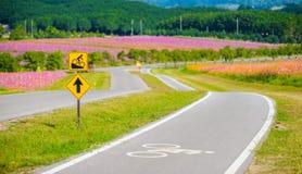 Roweru pas ruchu dla cyklisty Obrazy Royalty Free