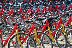 Roweru wynajem w Zwierzyniec, Polska zdjęcie stock