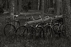 rowery Obraz Royalty Free