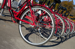 Rowery dla czynszu (jesień 2013) Zdjęcia Royalty Free