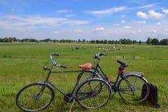 Rowery parkujący w polu w holandiach Zdjęcie Stock
