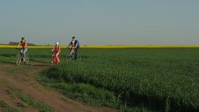 rowery rodzinne Sporty rodzinni na bicyklach w wsi Rodzice z dziecko przejażdżką na bicyklach zbiory wideo