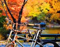 Rowery w Spadek Fotografia Royalty Free