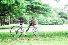 rowerze park Fotografia Stock