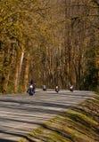 rowerzyści Obraz Royalty Free