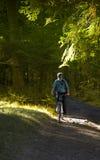 rowerzysta góra zdjęcie royalty free