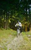 rowerzysta góra fotografia stock