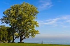 Rowerzysta w parku zdjęcie royalty free
