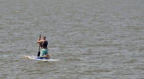Rowing человека Стоковые Изображения RF