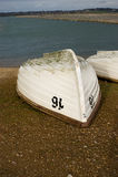 rowing шлюпки Стоковые Фото
