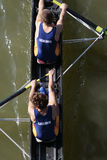 Rowing Royalty Free Stock Image
