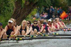 Rowing. The photograph was taken at the famous May Bumps, rowing competition at University of Cambridge. At the competitions boats are chasing one another Stock Image