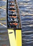 Rowing fotografía de archivo libre de regalías