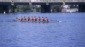 Rowing imagen de archivo
