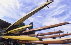 Rowing Royalty Free Stock Photos