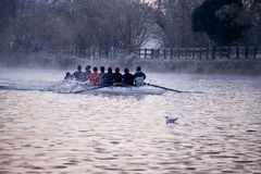 Rowing. Eight man crew training on the river Royalty Free Stock Photos