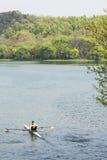 rowing royalty-vrije stock afbeeldingen