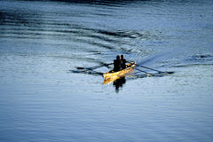 Rowing Royalty Free Stock Photo