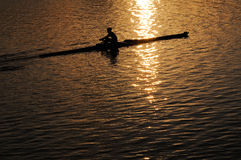Rowing Alone in the Morning Royalty Free Stock Image