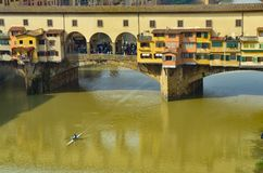 Rowing on the arno royalty free stock image