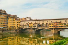 Rowing on the Arno River Royalty Free Stock Photography