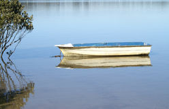Rowing boat. Old blue and white rowing boat anchored in the mangros of salt water lake taken on the south coast of NSW Australia Stock Photography