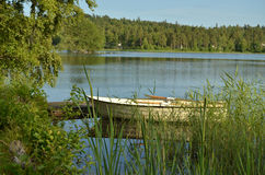 Rowing boat on a calm lake. A little white rowing boat rests by the side of a calm lake, anchored by a small wood pier hidden among green pond reeds. In the stock photos