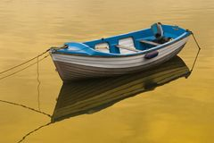 Rowing Boat Golden Reflection Royalty Free Stock Image